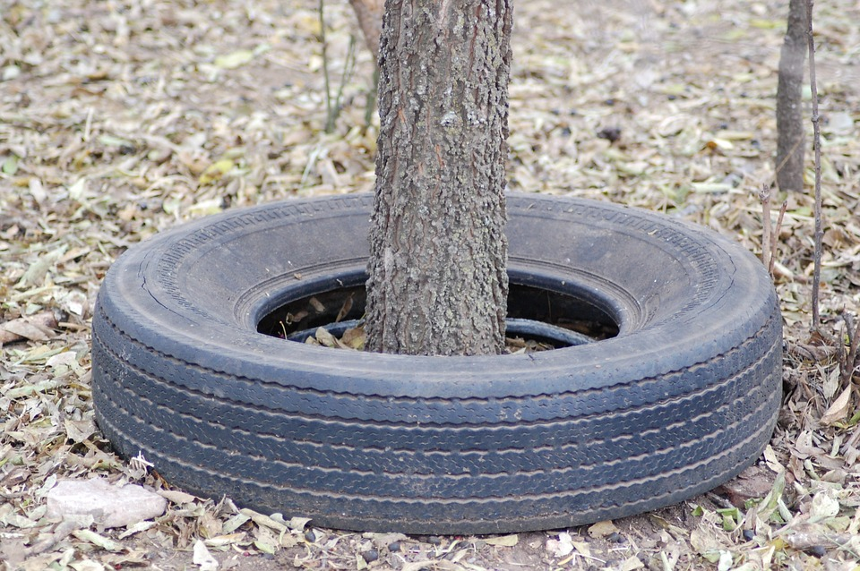 Not quite the used auto tire tree we were thinking about